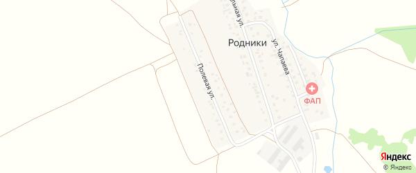 Полевая улица на карте деревни Родники с номерами домов