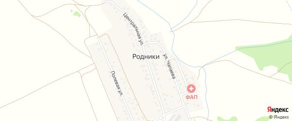 Железнодорожная улица на карте деревни Родники с номерами домов