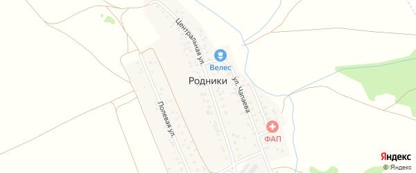 Заречная улица на карте деревни Родники с номерами домов