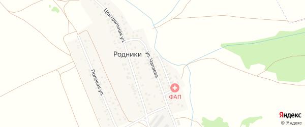 Улица Чапаева на карте деревни Родники с номерами домов