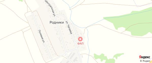 Набережная улица на карте деревни Родники с номерами домов