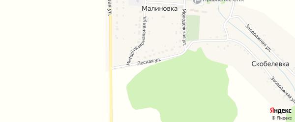 Лесная улица на карте деревни Малиновки с номерами домов