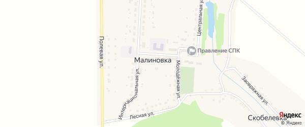 Полевая улица на карте деревни Малиновки с номерами домов