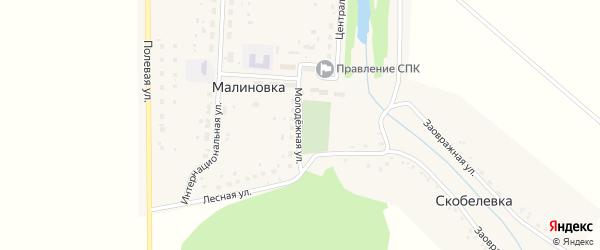 Молодежная улица на карте деревни Малиновки с номерами домов