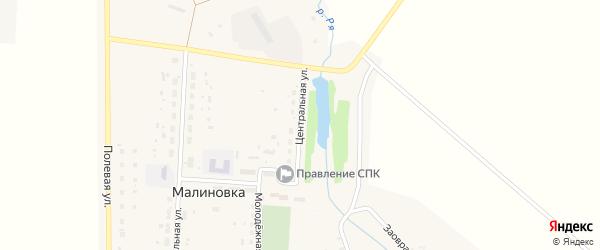 Центральная улица на карте деревни Малиновки с номерами домов