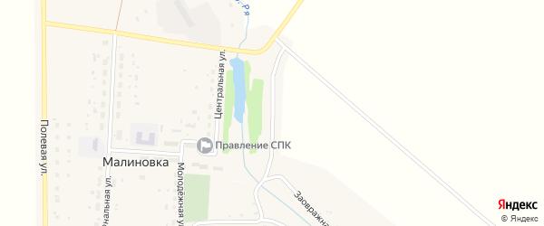 Заречная улица на карте деревни Малиновки с номерами домов