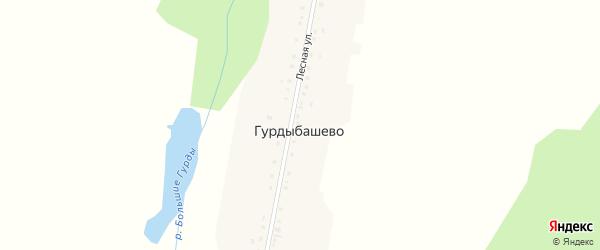 Лесная улица на карте деревни Гурдыбашево с номерами домов