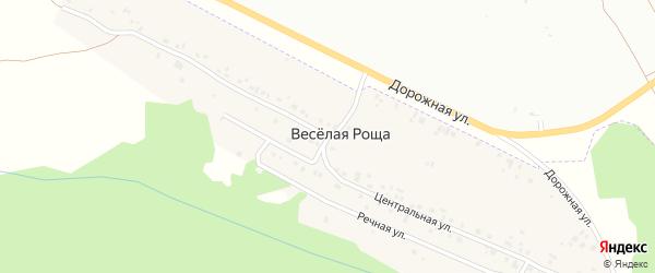 Центральная улица на карте деревни Веселой Рощи с номерами домов