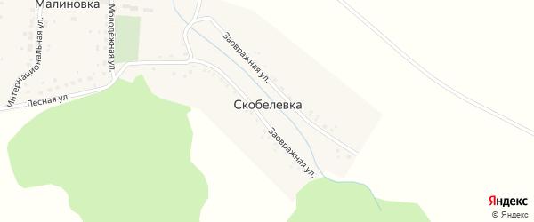 Разъезд Мелеуз на карте деревни Скобелевки с номерами домов