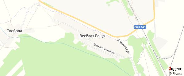 Карта деревни Веселой Рощи в Башкортостане с улицами и номерами домов