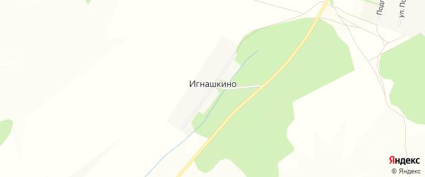 Карта деревни Игнашкино в Башкортостане с улицами и номерами домов