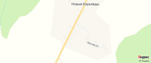 Центральная улица на карте села Новые Карьявды с номерами домов