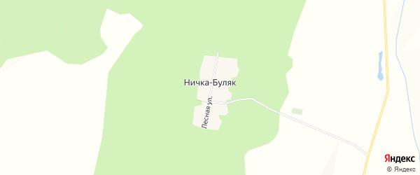Карта деревни Нички-Буляк в Башкортостане с улицами и номерами домов