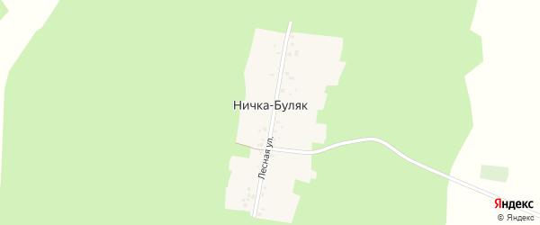 Лесная улица на карте деревни Нички-Буляк с номерами домов