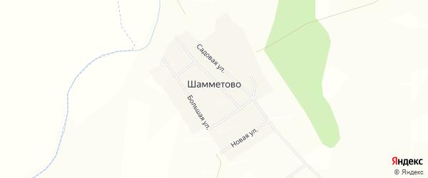 Карта деревни Шамметово в Башкортостане с улицами и номерами домов