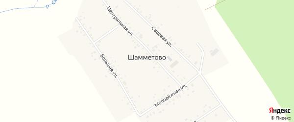 Большая улица на карте деревни Шамметово с номерами домов