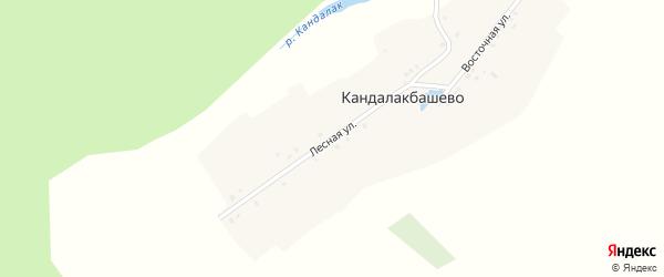 Лесная улица на карте деревни Кандалакбашево с номерами домов