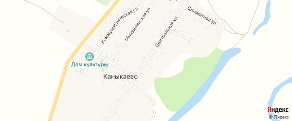 Центральная улица на карте села Каныкаево с номерами домов