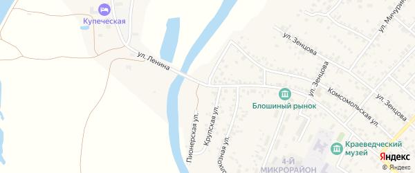 Пионерская улица на карте села Николо-Березовки с номерами домов