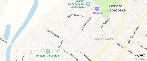 Улица Мичурина на карте села Николо-Березовки с номерами домов