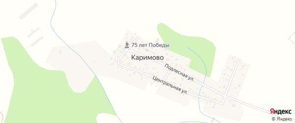 Центральная улица на карте деревни Каримово с номерами домов