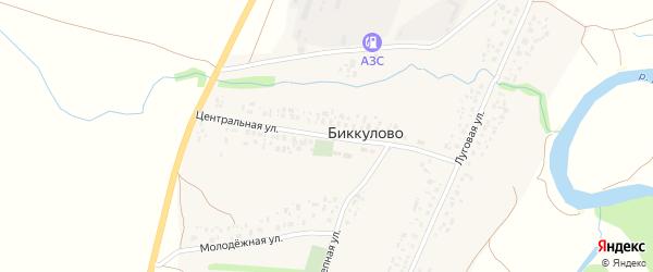 Центральная улица на карте села Биккулово с номерами домов