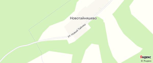 Улица Новый Тайняш на карте деревни Новотайняшево с номерами домов