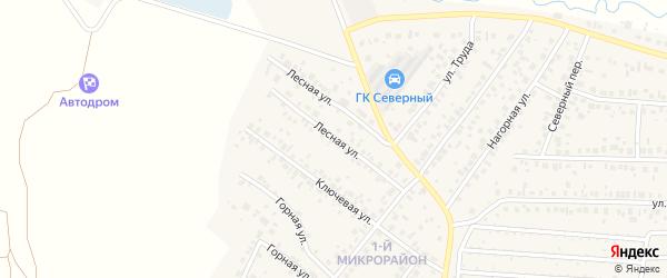 Лесная улица на карте села Николо-Березовки с номерами домов