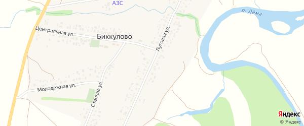Луговая улица на карте села Биккулово с номерами домов