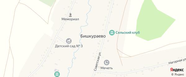Южная улица на карте села Бишкураево с номерами домов