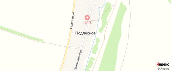 Заречная улица на карте деревни Подлесного с номерами домов