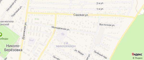Молодежная улица на карте села Николо-Березовки с номерами домов