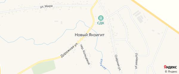 Дорожная улица на карте деревни Нового Янзигита с номерами домов