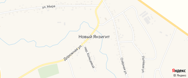 Улица Мира на карте деревни Нового Янзигита с номерами домов