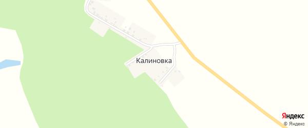 Молодежная улица на карте деревни Калиновки с номерами домов