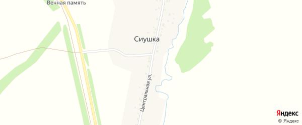 Центральная улица на карте деревни Сиушки с номерами домов