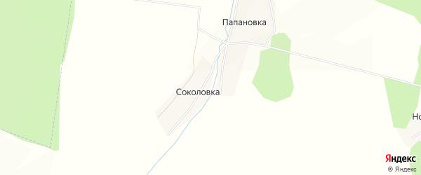 Карта деревни Соколовки в Башкортостане с улицами и номерами домов