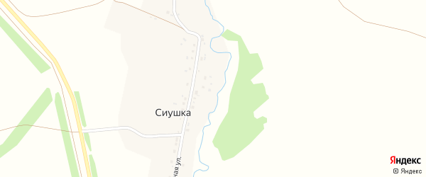 Междугорная улица на карте деревни Сиушки с номерами домов