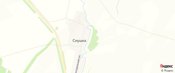Карта деревни Сиушки в Башкортостане с улицами и номерами домов