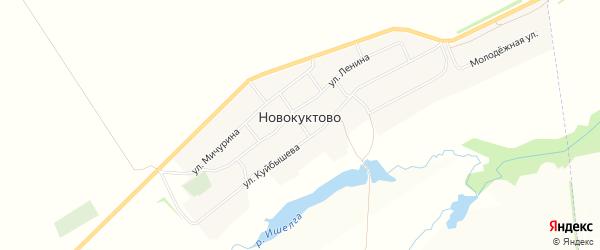 Карта деревни Новокуктово в Башкортостане с улицами и номерами домов