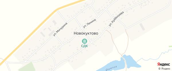 Улица Мичурина на карте деревни Новокуктово с номерами домов
