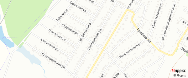 Центральная улица на карте села Амзи с номерами домов