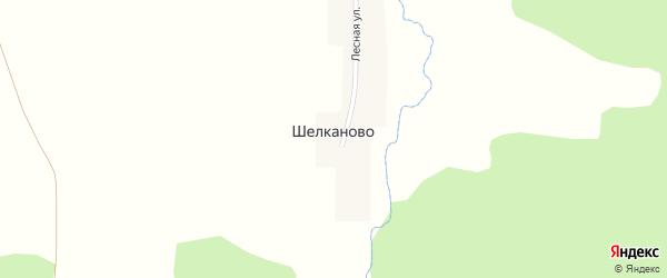 Лесная улица на карте деревни Шелканово с номерами домов