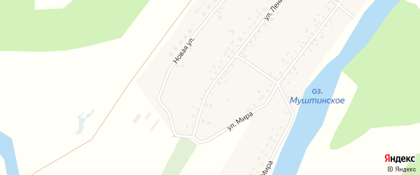 Улица Ленина на карте села Старой Мушты с номерами домов