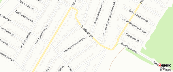Инициативная улица на карте Нефтекамска с номерами домов