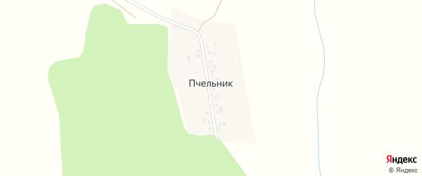 Центральная улица на карте деревни Пчельника с номерами домов