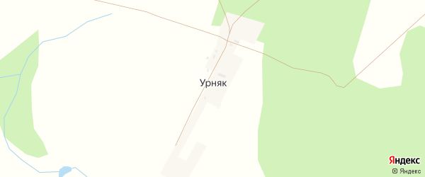 Лесная улица на карте деревни Урняка с номерами домов