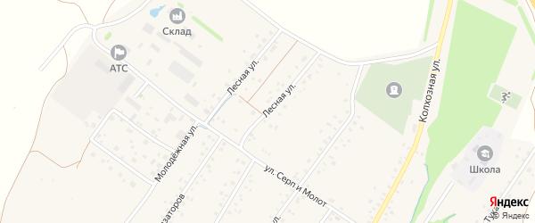 Лесная улица на карте села Новонагаево с номерами домов