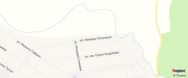 Улица Им Ираиды Петровой на карте села Бижбуляка с номерами домов