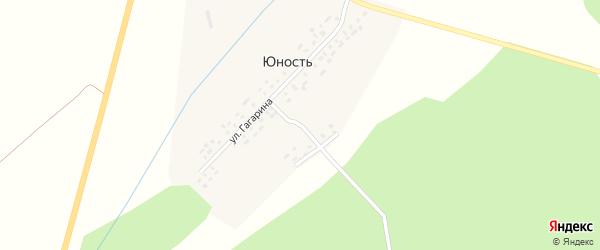 Улица Пушкина на карте деревни Юности с номерами домов